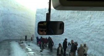15 Meter Schnee in Japan