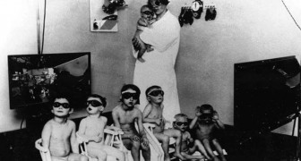 Het Lebensbornprogramma was een experiment van de Nazi's dat als doel had het ras te zuiveren