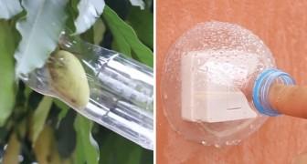 In cerca di idee per riutilizzare le bottiglie di plastica? Questo video le raccoglie praticamente TUTTE
