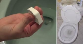 Ett miljövänligt alternativ för att hålla toaletten ren