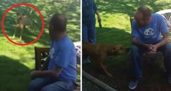 A man is unrecognizable except for his smell -- and his dog remembers him!