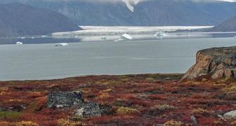 Das Schmelzen der Gletscher könnte Viren und Bakterien freisetzen, die im Permafrost versteckt sind