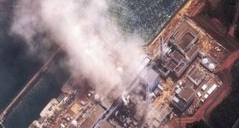 Une étude norvégienne a quantifié les radiations qui nous ont frappés après Fukushima: voici les résultats