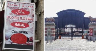 Macellare gli animali secondo i rituali islamici ed ebraici: una legge in Belgio fa scoppiare le polemiche