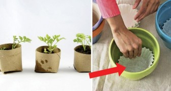 Discover how to drill drainage holes in clay pots!