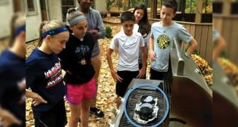 Un groupe de jeunes invente une méthode pour recycler le polystyrène
