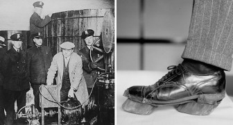 Schwarzbrenner zogen Cow Shoes an, um nicht erwischt zu werden