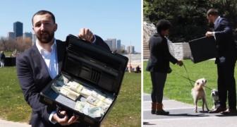 Hij biedt willekeurige hondeneigenaren 100.000 dollar aan om hun hond te verkopen: dit is hun antwoord!
