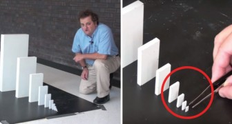 The amazing power of the Domino Effect!