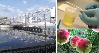 onderzoekers ontdekken hoe ze urine kunnen omzetten in elektriciteit en drinkwater