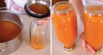 Tasty homemade peach fruit juice --- lip-smacking good! :)