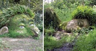 Les jardins perdus d'Heligan, la splendeur retrouvée après des années de déclin. Une merveille!