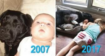 Sua sorella le aveva detto di non prendere un cucciolo durante la gravidanza, ma lei non l'ha ascoltata
