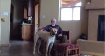 Le père souffre d'Alzheimer et ne parle plus: mais voici ce qui se passe quand il reste seul avec le chien