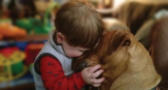 25 foto che ti convinceranno che ogni bambino dovrebbe crescere con un amico a quattro zampe