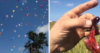 Liberare palloncini in aria non è un gesto innocuo: ecco perché non andrebbe MAI fatto