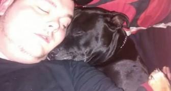 Un giovane aveva deciso di togliersi la vita... ma quello che vide in bocca al cane cambiò tutto