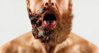 Ein Mikrobiologe enthüllt dass ein langer Bart schmutziger sein kann als ein Bad…