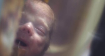 Neo mamme e papà di bambini prematuri: questa pubblicità vi riempirà il cuore di emozione