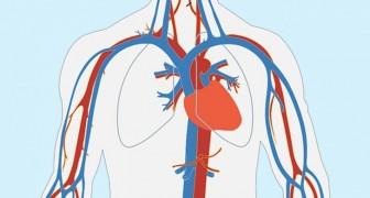 Un mese prima di un attacco di cuore, il tuo corpo può avvertirti con questi 8 sintomi