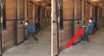Das Kind schafft es nicht sein Pferd aus dem Stall zu locken: Wenn ihr seht um was es sich handelt, werdet ihr ein Lachen nicht zurückhalten können