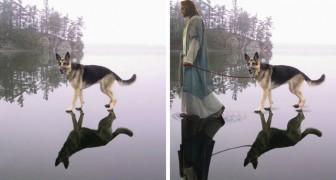 Prima e dopo Photoshop: questi sono i fotomontaggi più divertenti mai andati in rete