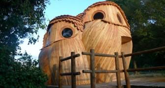 Puoi dormire in questi gufi di legno GRATUITAMENTE e visitare il sud della Francia: scoprite il loro interno