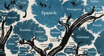 Deze stamboom toont de banden die talen met elkaar hebben en verandert de manier waarop je naar de wereld kijkt