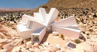 Containers worden droomhuizen in dit geniale project
