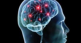 Sensazionale scoperta in campo scientifico: anche il cervello ha la sua rete fognaria