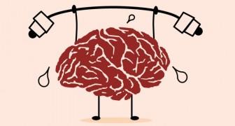 10 fatti riguardo al cervello umano che probabilmente non sapevi