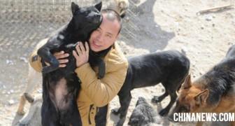 Een Chinese miljonair wil alle honden redden van de slacht nadat hij zijn hond kwijt was