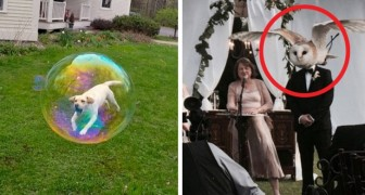 17 pictures that will show you what coincidence is capable of doing ...