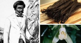 Uno schiavo di 12 anni scoprì il metodo di impollinazione che permette oggi di avere la vaniglia