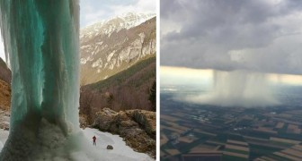 20 photos spectaculaires qui montrent toute la créativité de Mère Nature.