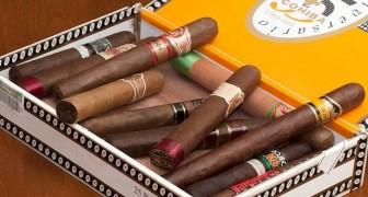 I ricercatori hanno scoperto quanto i diversi tipi di fumo possono danneggiare la vostra salute