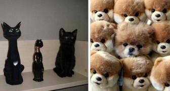 23 animaux qui maîtrisent parfaitement l'art du camouflage