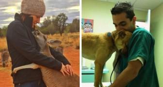 12 animaux reconnaissants qui n'ont pas oublié de remercier leurs bienfaiteurs