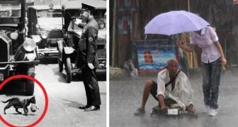 14 piccole storie per ricordarci che il mondo è pieno di amore e altruismo