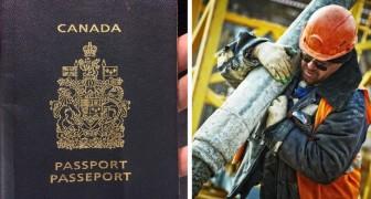 Se sai svolgere uno di questi lavori, il Canada ti sta aspettando
