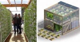 Hier der innovative urbane Garten, mit dem man bis zu 6 Tonnen Lebensmittel pro Jahr produzieren kann