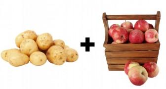 12 nützliche Tricks um Lebensmittel länger und auf natürliche Weise zu konservieren