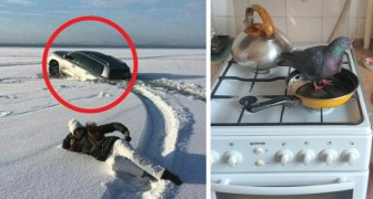 18 people who received surprises that they are unlikely to forget!