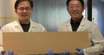 Wissenschaftler haben das Super-Holz erschaffen: Es ist härter als Stahl und kann sogar Projektile aufhalten