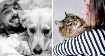 I proprietari di gatti sono più intelligenti di quelli dei cani: a dirlo è uno studio