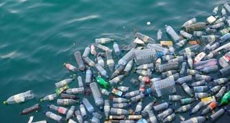 Die Menge an Plastik, das im Ozean landet wird sich in weniger als 10 Jahren verdreifachen