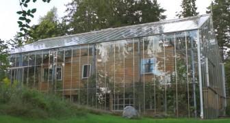 Eine schwedische Familie hat das eigene Haus mit einem riesigen Gewächshaus ummantelt, um mehr Wärme zu erzeugen und Gemüse anzubauen