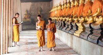 Les 4 étapes de la croissance selon la sagesse tibétaine et ce que les parents peuvent apprendre de celles-ci