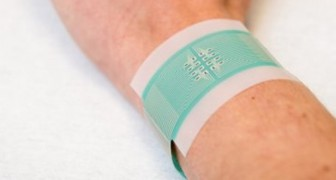 Addio alle punture: per la misurazione della glicemia arriva un cerotto indolore e molto più accurato