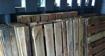 Estas madeiras deveriam ser jogadas fora, mas uma família teve uma ideia brilhante